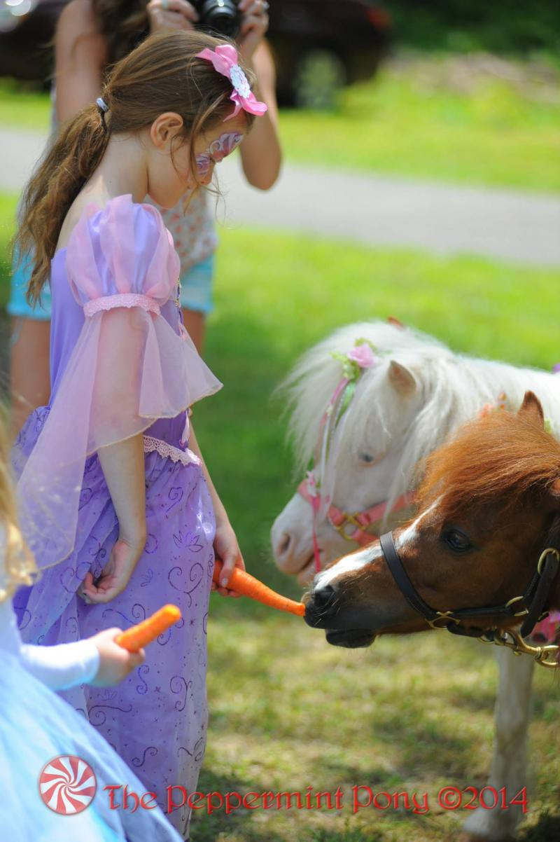 carrot feeding is part of every Peppermint  Pony Party