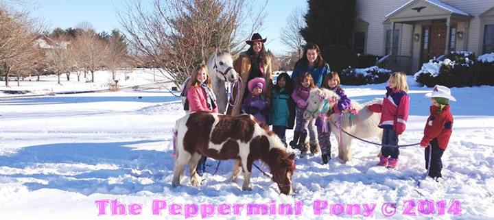 snow pony rides face painting unicorn cowgirl birthday parties columbia md