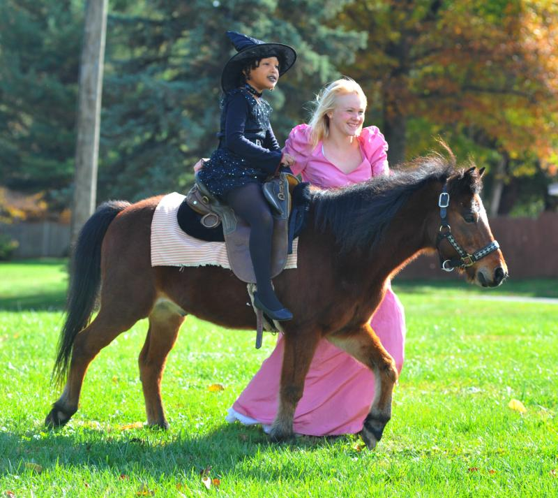 Jesse James, small bay riding pony giving Halloween rides to a witch