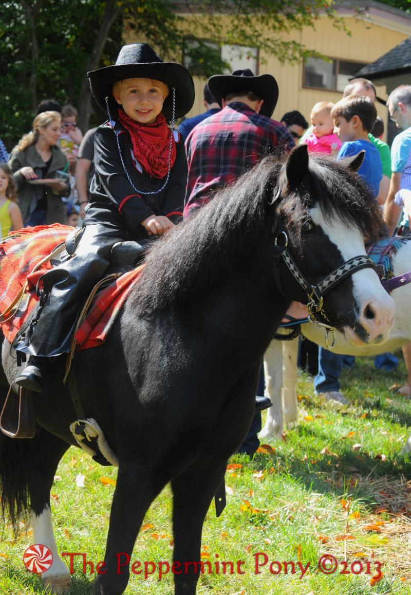 Angus Cowboy Pony Party Rental Pony for boy's Wild West parties