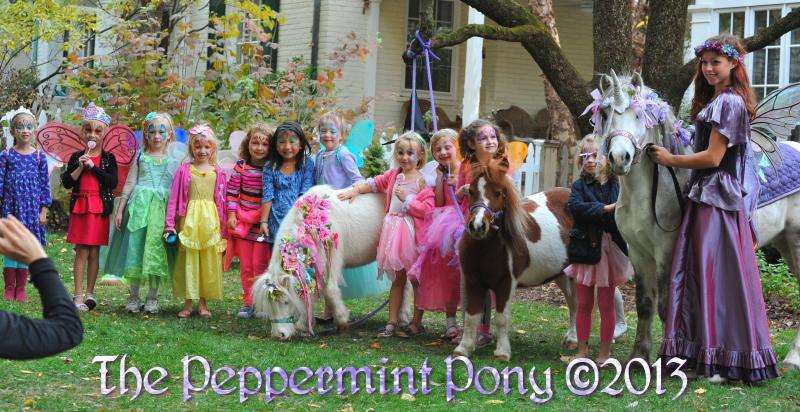Fairy Unicorn Party with The Peppermint Pony Columbia Ellicott City Face Paint